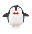 Cartoon penguin character Funny bird vector image vector image