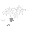 contour drawing twig with maple leaves fall vector image