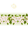 floral border seamless background with blooming vector image vector image