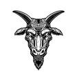 head goat in vintage monochrome style design vector image
