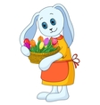 rabbit girl with flowers vector image