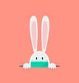 white rabbit wearing a protective mask vector image vector image