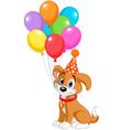 birthday puppy vector image