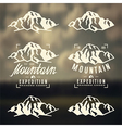 Mountain expedition labels vector image vector image