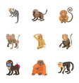 simian icons set cartoon style vector image vector image