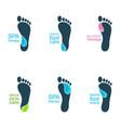 water feet vector image vector image