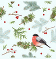 winter bullfinch pattern vector image