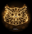 abstract polygonal tirangle animal owl neon sign vector image vector image