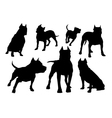 amstaff silhouettes set vector image vector image