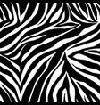 animal print zebra ornament seamless vector image