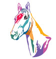 colorful decorative horse 12 vector image vector image