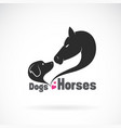 doglabrador and horse head on white background vector image vector image