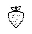 fresh strawberry fruit isolated icon vector image vector image