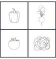 Icons Pepper RadishTomatoesCabbage vector image vector image