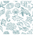 seamless pattern with sketch seal ocean life vector image vector image
