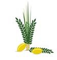 Sukkot - Jewish holiday vector image vector image