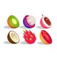 tropical fruits set kiwi mangosteen dragon vector image