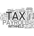 a quick guide to payroll tax text word cloud vector image vector image