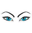 beautiful eyes vector image vector image