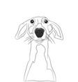 dog portrait lines vector image vector image