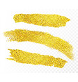 gold paint strips vector image