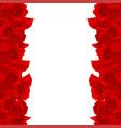 red carnation flower border dianthus caryophyllus vector image vector image