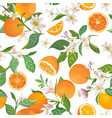 seamless orange pattern with tropic fruits leaves vector image vector image