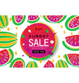summer sale and cute watermelon vector image vector image