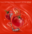 tomatoes and a glass with splashing tomato juice vector image
