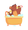 cute cartoon bear taking a bath washing its body vector image