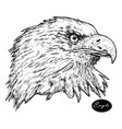 eagle - hand drawn isolated vector image vector image