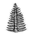 Hand drawn Sketch of Christmas trees icon with a vector image vector image