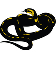 snake tattoo vector image vector image
