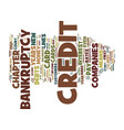the consequences of credit card company created vector image vector image