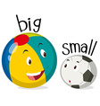 Two balls one big and one small vector image vector image