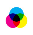 Cmyk color model scheme three overlapping circles vector image