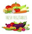fresh vegetables banner poster ripe vegetarian vector image vector image