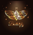 gold luxury abstract butterfly on brown background vector image vector image