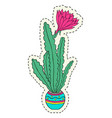 hand drawn flower in pot vector image vector image