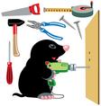 cartoon mole builder vector image