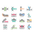 dna logotype business identity with science vector image