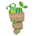 Organic eco bag concept Green world natural vector image vector image
