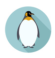 Penguin2 vector image