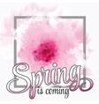 - spring season - cherry vector image