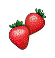 beautiful cartoon red strawberry with black vector image vector image