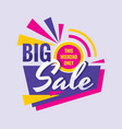 big sale - concept banner design discount vector image vector image
