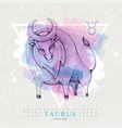 card with astrology taurus zodiac sign