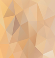low polygon background vector image vector image