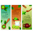 matcha vertical banners vector image vector image