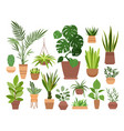 plant in pot set cartoon flat vector image vector image